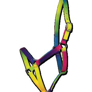 Licol multicolor
